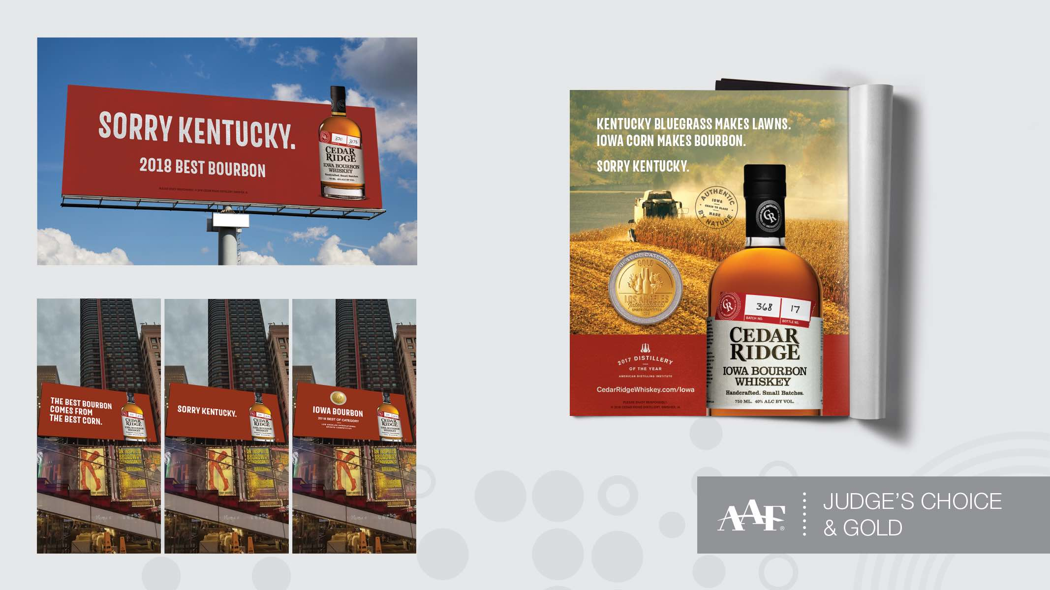Sorry Kentucky Campaign AAF award winner