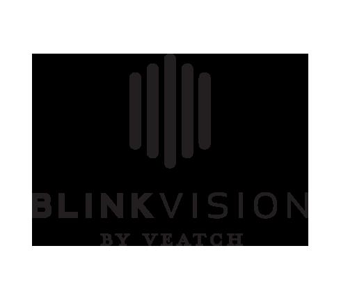 blink vision